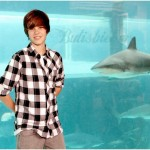 Justin-Bieber-is-the-Bahamas-justin-bieber-11629122-500-370